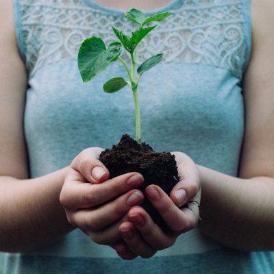 ESG Plant